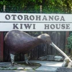 http://novzelandiya.ru/img/pages/Парк птиц в Отороханга